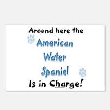 Water Spaniel Charge Postcards (Package of 8)