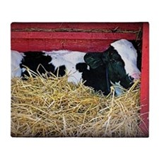 Cow Photo Throw Blanket