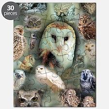Owls Puzzle