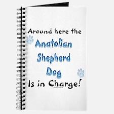 Anatolian Charge Journal