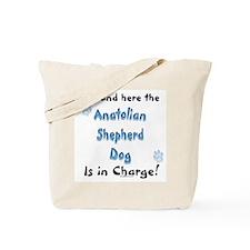 Anatolian Charge Tote Bag
