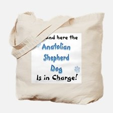 Anatolian Charge Tote Bag