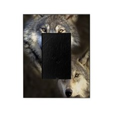 Wolfpack Picture Frame