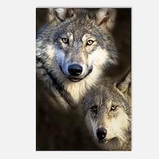 Wolfpack Postcards (Package of 8)