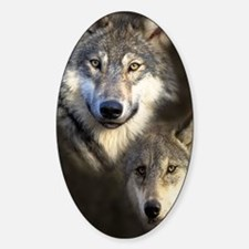 Wolfpack Decal