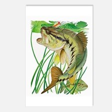 Largemouth Bass with Lily Postcards (Package of 8)