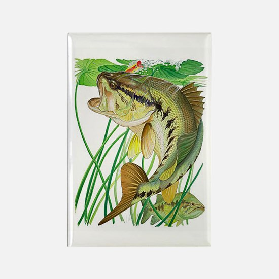 Largemouth Bass with Lily Pads co Rectangle Magnet