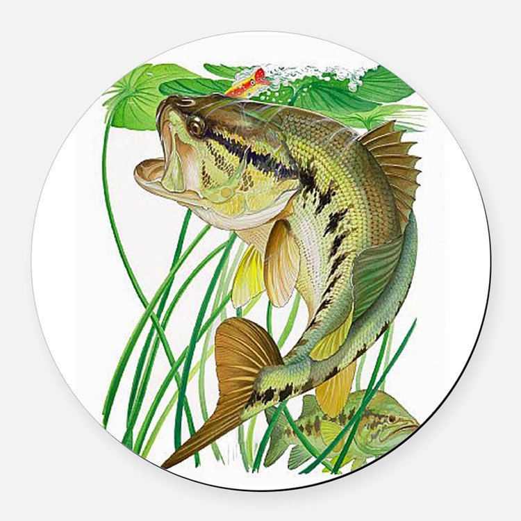 Largemouth Bass with Lily Pads co Round Car Magnet