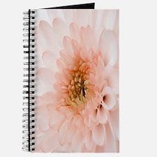 macro-flower copy Journal