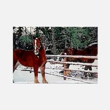 Horses Rectangle Magnet
