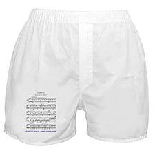 Moonlight-Sonata-Ludwig-Beethoven-iPa Boxer Shorts
