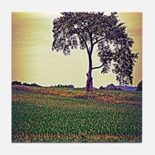 One Tree Tile Coaster