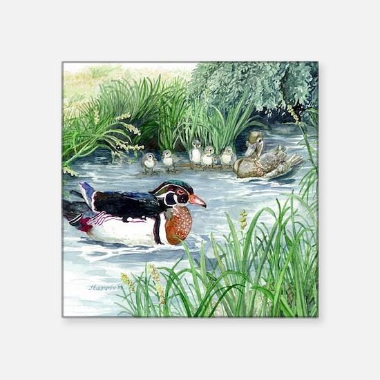 "Wood Duck Square Sticker 3"" x 3"""