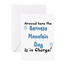 Bernese Charge Greeting Cards (Pk of 10)