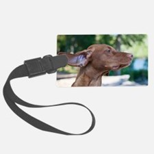 breezyvizla Luggage Tag
