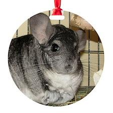 Ornament Rd - Benny Ornament