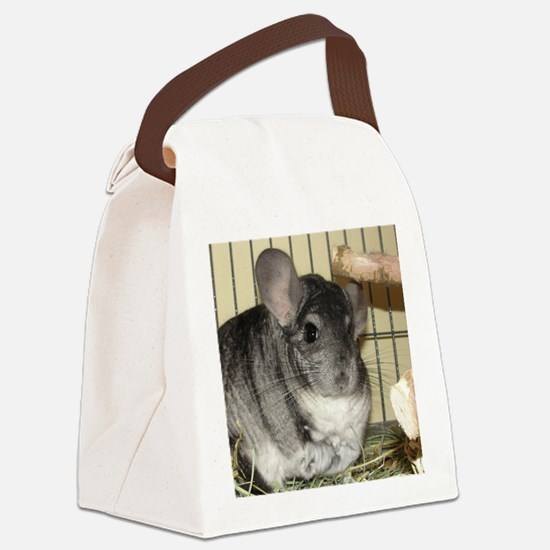 Ornament Rd - Benny Canvas Lunch Bag