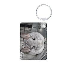 iTouch - Latte Aluminum Photo Keychain