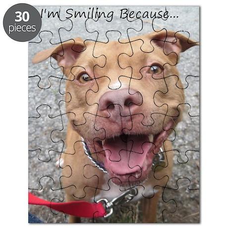 Bailey Smiley-Card Puzzle