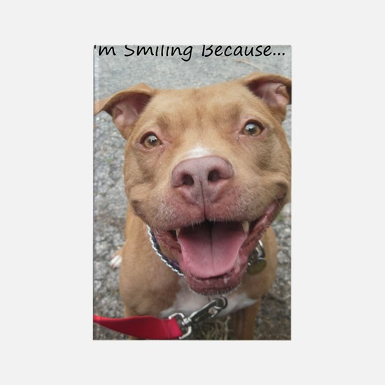 Bailey Smiley-Card Rectangle Magnet