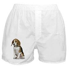 Beagle Mom Key Front Boxer Shorts