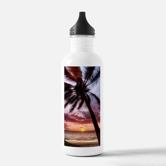 maui hawaii coconut pa Water Bottle
