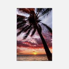 maui hawaii coconut palm tree sun Rectangle Magnet