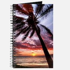 maui hawaii coconut palm tree sunset Journal