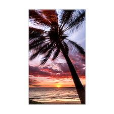 maui hawaii coconut palm tree  Decal