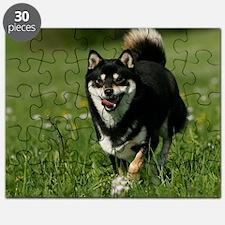cal_shiba_apr Puzzle