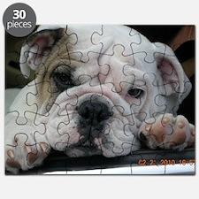 janfeb2010 100 Puzzle