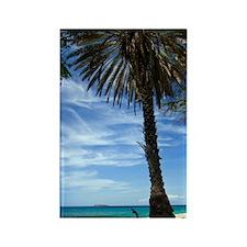 Makena Maui Palm Rectangle Magnet