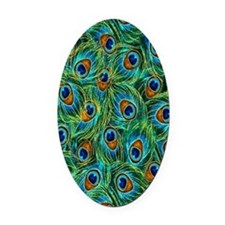 Feathers Oval Car Magnet