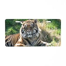 TigerWA Shoulder Aluminum License Plate
