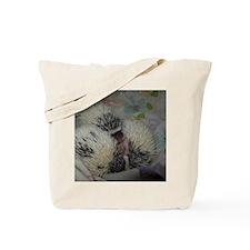 100_5939 Tote Bag