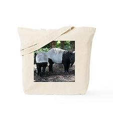 1_IMG_9354 Tote Bag