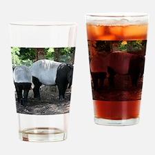 1_IMG_9354 Drinking Glass