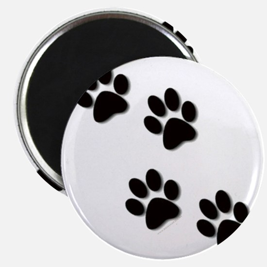paws.gif Magnet