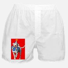 mason Boxer Shorts