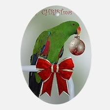 hokucard8 Oval Ornament