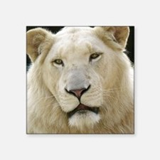 "blonde lion note Square Sticker 3"" x 3"""