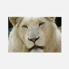 blonde lion note Rectangle Magnet