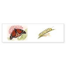 butterfly composite Bumper Sticker
