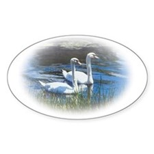 swans Decal