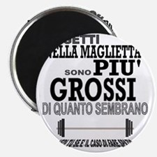 piu grossi light Magnet