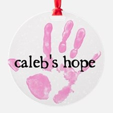 Calebs Hope Logo Ornament