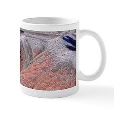 painted desert Mug