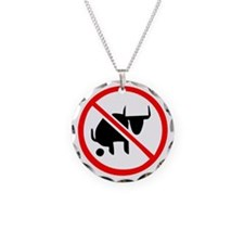 No BS Necklace
