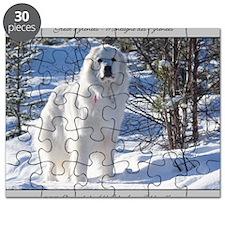 cub_12_11 Puzzle