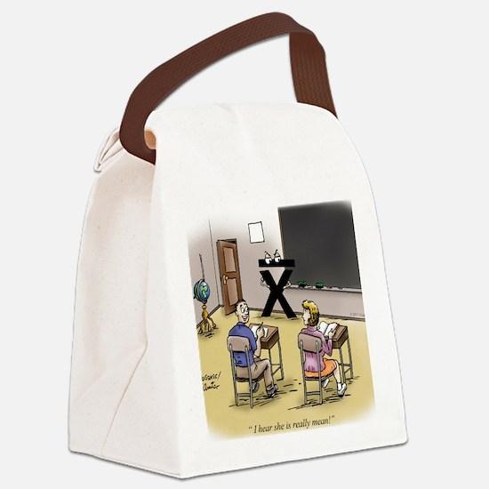 Pi_69 Mean Teacher (20x16 Color) Canvas Lunch Bag